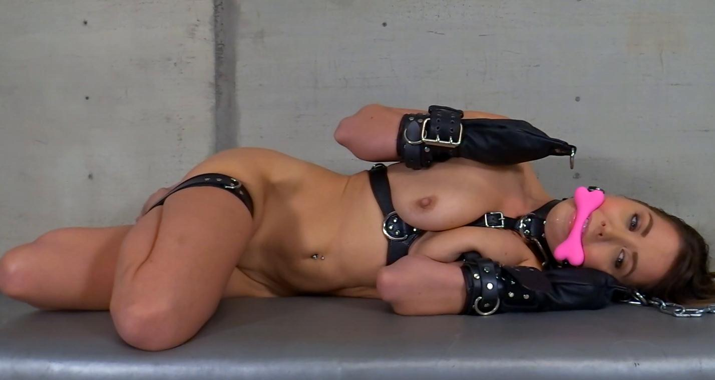 Leather bondage - Bone gag for Chrissy Marie is left locked down with a chain leash, leather body harness. She struggles and helplessly drools - Slave Pet Punished - Belt bondage