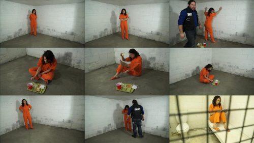 Metal bondage - Gotcuffs - JJ Plush is arrested and cuffed - Part 5 of 6 - Handcuffs bondage