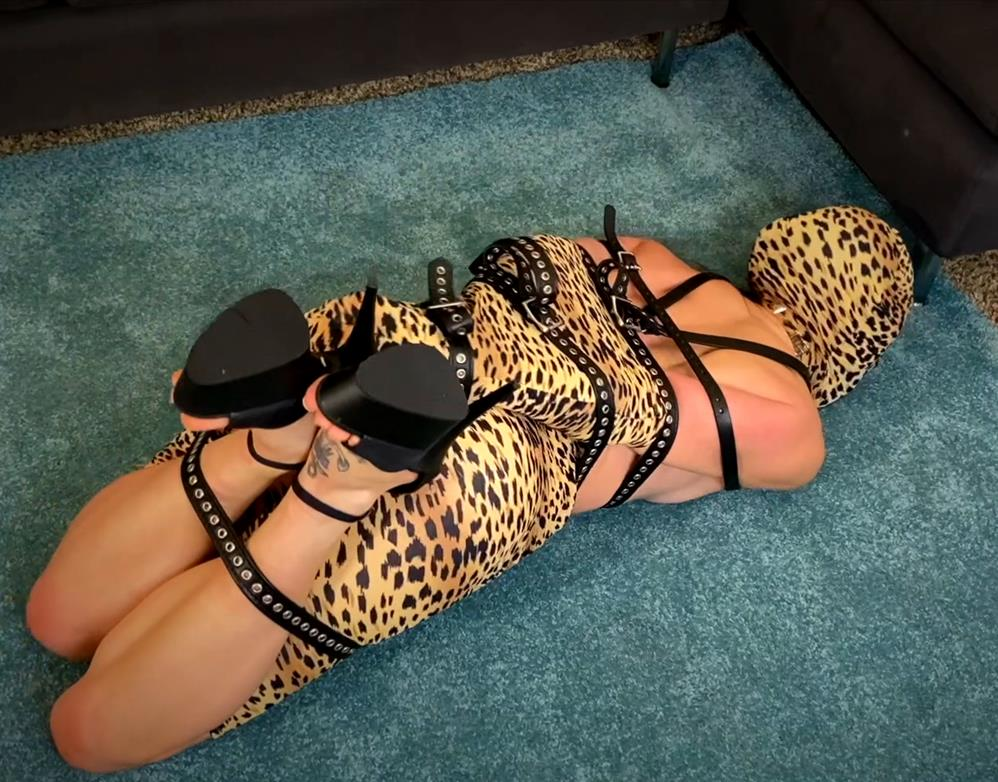 Leather Bondage - Dacey Harlot is bound and whimpering through her red ballgag - I never met a leopard - I didn't like