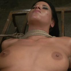 Rope Bondage - This bound beauty is roped to cage by Perfect Slave – Sophia Caged – Sophia Bella