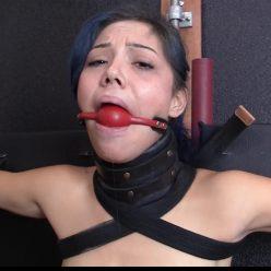 Sasha requires to conquer concern of being hooded - Bondage Life – Hood Training – Sasha Darling