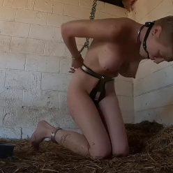 Excellent bondage – In The Hay – Rachel Greyhound