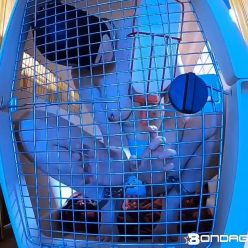 Bondage Life – In The Crate - Hooded as well as shackled Rachel Greyhound