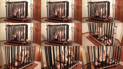 Metal Bondage - Bondage Life – Rachel Barred -  Rachel Greyhound in  steel pipeline cage